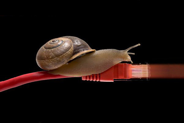 Snail-slow-network-cable